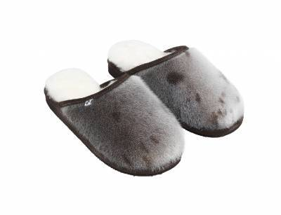 Glacier Slippers